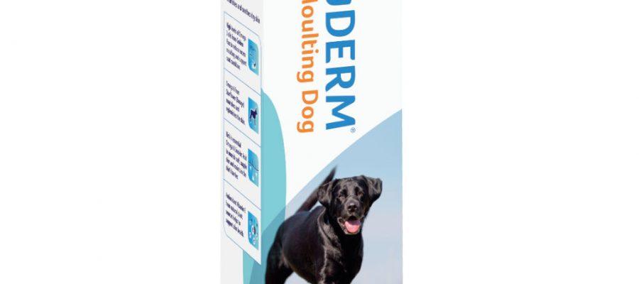 YuDERM Moulting Dog 250 ml – Szőr- és Bőrápolás kutyáknak
