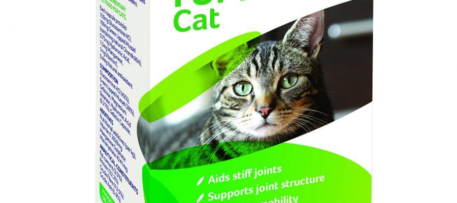 Yumove cat kapszula – ízületekre cicáknak
